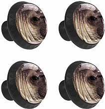 FCZ 4 Pieces Cute Seal Drawer Knobs Pull Handle