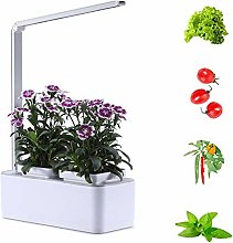FDYD Smart Indoor Garden Hydroponic Indoor Herb