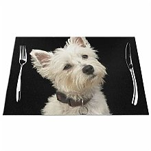 Feamo Westie West Highland Terrier With Collar