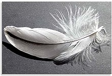 Feather Canvas Abstract Nature Grey White