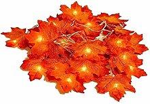 FENGLI LED Maple Leaf Light 2 Modes USB Powered