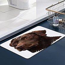 FengYe Soft Microfiber Bath Mat,Labrador Retriever