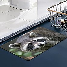FengYe Soft Microfiber Bath Mat,Raccoon Animal