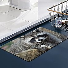 FengYe Soft Microfiber Bath Mat,Raccoon Cute