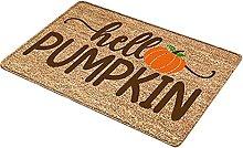 Fenteer Outdoor Indoor Doormat Non Slip Door Mats
