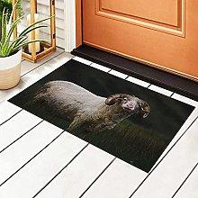 FFLSDR Doormat Adult Wooly Bighorn Sheep PVC Shoes
