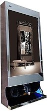 FGVBC Shoe Polishing Machine-Automatic Induction