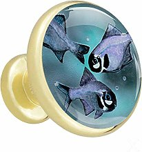 Fish Painting 4 Piece Crystal Gold Knobs Round