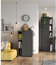 Fleury 2 Door Storage Cabinets Brayden Studio