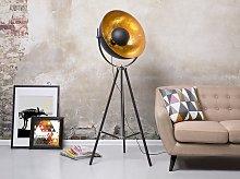 Floor Lamp Black with Gold Metal 165 cm Tripod