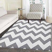 Floor Mat Rug Indoor/Front Door/Kitchen and Living