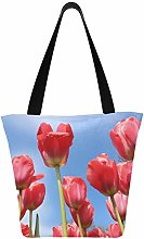Flowers Tulips Spring Floral Plant Red Nature