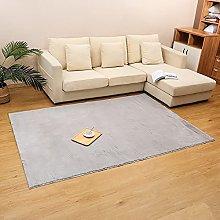 Fluffy Carpet,Plush Area Rug for Living Room,Extra
