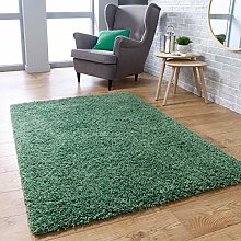 Fluffy Rug Sage Green Shaggy Carpet for Bedroom
