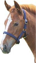 Foal Headcollar (Foal/Mini) (Navy) - Shires