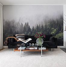 Forest Fog Mural Wallpaper (SqM)