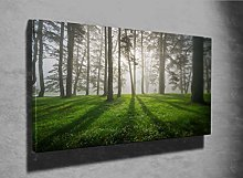 Forest Landscape and Fog Photo Canvas Print