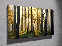 Forest Sunrise trees photo Framed canvas print
