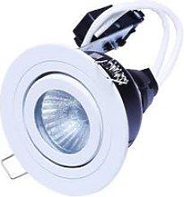 Forum Cali Tiltable Downlight Bathroom Light -