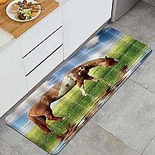 FOURFOOL Kitchen Rugs,Horse grazing,Non-Slip