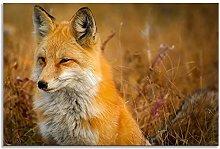 Fox Orange Animal Kingdom Sitting Canvas Wall Art