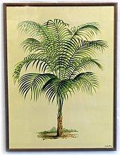 Framed Art - Framed Palm Tree Print -