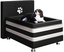Freida Bolster Cushion Dog Bed with Mattress