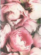Fresco Blossom Pink Wallpaper