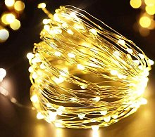 FRIDEKO 30 LED 3M/10FT Micro Silver Wire Battery