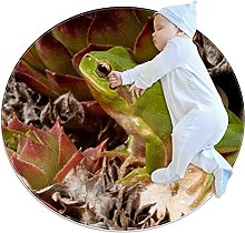 Frog, Kids Round Rug Polyester Throw Area Rug Soft