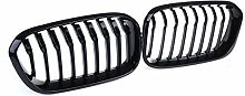 Front Grill Grill Racing, 1 Pair Car Front Kidney