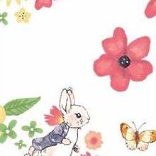 FS689_3 Peter Rabbit Large Florals Cotton Fabric