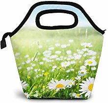 Funny Club Reusable Lunch Bag,Green Lawn Lunch Bag