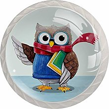 FURINKAZAN Cabinet Knob Pull Handle Cute Owl with