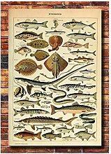 FUXUERUI Retro Ocean Sea Shell Fish Animal Vintage