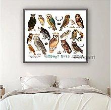 FUXUERUI Vintage Owls Species Diagram Birds