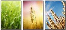FUXUERUI Wheat Growth Canvas Wall Art Print Poster