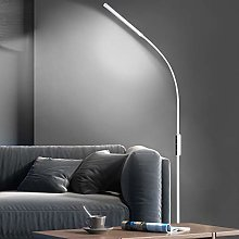 Ganeed LED Floor Lamp,Modern Touch Standing