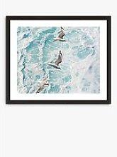 Gannets 1 - Framed Print & Mount, 56 x 66cm, Blue