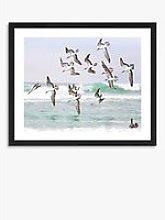 Gannets 2 - Framed Print & Mount, 56 x 66cm, Blue