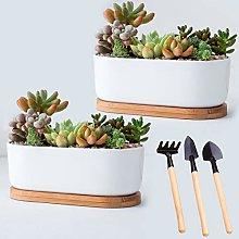 Garden Ceramic White Flower Plant Pot, Succulent