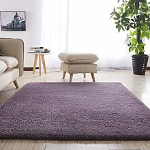 GBFR Nordic fluffy Carpet Rug Carpet Rugs for