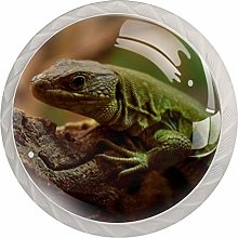 GeckoRound Glass knob White Drawer Handle, with