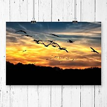 Geese Sunset Photographic Print Big Box Art