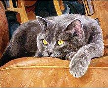 GenericBrands DIY Oil Painting by Numbers Kits,