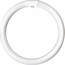 Generic LP9660 Circular Triphosphor Tube 32w 12