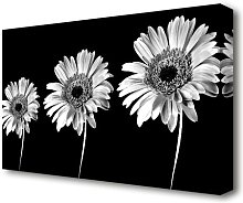 Gerbera Daisies Black And White Flowers Canvas