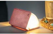 Gingko - Mini LED Smart Book Blush Pink