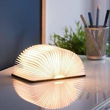 Gingko - Mini Smart Book Light Maple - White
