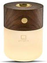 Gingko - Smart Diffuser Lamp